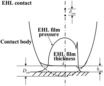 Illustration of the mutual approach in dry and EHL contacts