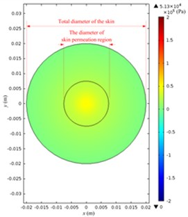 Simulated acoustic pressure distribution at V0p= 40 V: a) acoustic pressure distribution  in the Franz diffusion cell; b) acoustic pressure distribution at the upper surface of the skin  in the donor; c) acoustic pressure distribution at the lower surface of the skin in the receptor;  d) acoustic pressure distribution on the parallel plane at the liquid draw-off position