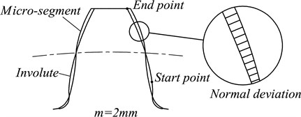 The geometric models for both micro-segment gear and standard involute gear