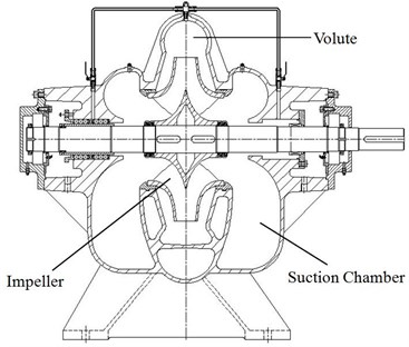 Assembly drawing of the double suction pump