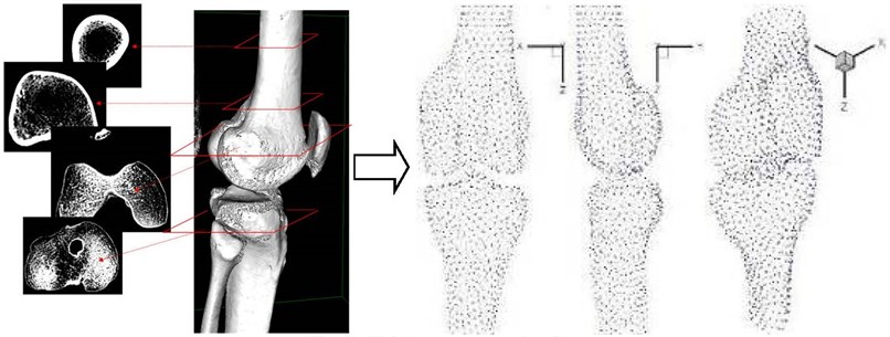 Cloud points of knee bone topology