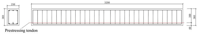 Dimension of the pre-stress concrete beam (mm)