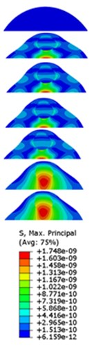 Stress contours of the cell under 0.3g acceleration for different frequencies  and in X-direction, Y-direction and Z-direction
