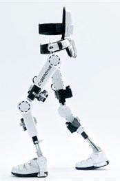 Lower limb power-assisted device