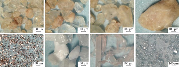 The morphology of the contaminants particles