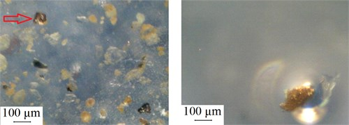 The morphology of lubricant specimen of silica A