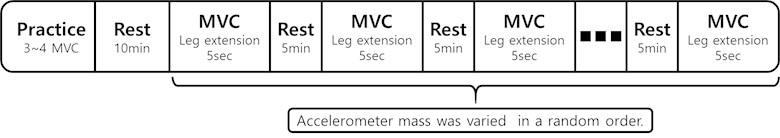 The MVC Exercise protocol