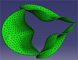 Model mesh diagrams for: a) leaflets, b) domain