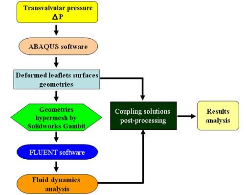 FSI simulation processing