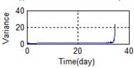 Relative characteristics of whole lifetime