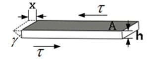 The schematic of viscoelastic layer model