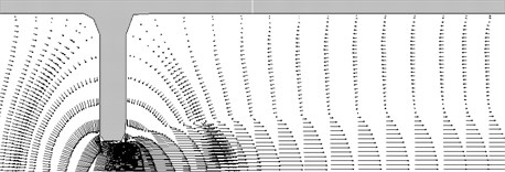 The flow field in the constriction