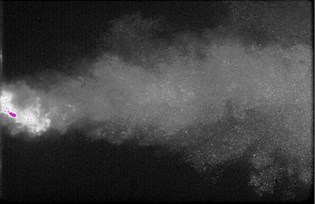 Bubble cloud changes from pulsed nozzle by CCD camera