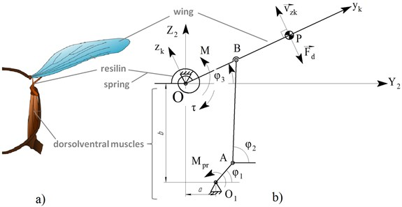 а) Wing coupling in insect thorax, b) mounting of wing on an elastic suspension