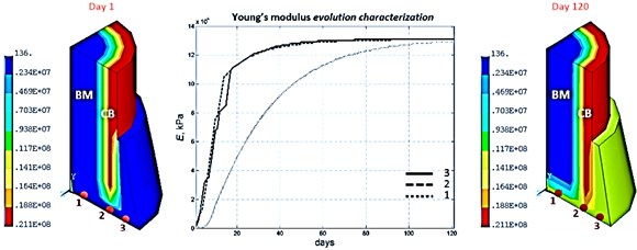Young's module evolution characterization (harmonic load frequency – 100 Hz,  time of reaching static load maximum – 60 days)
