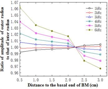 Ratio of outer radius amplitude  to inner radius amplitude