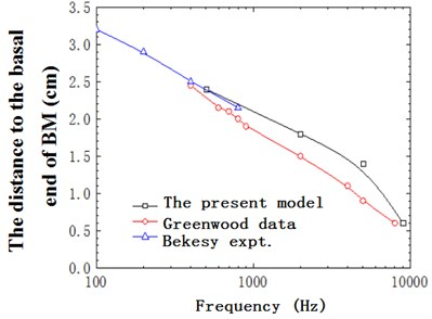The distance to the basal end of BM with frequency