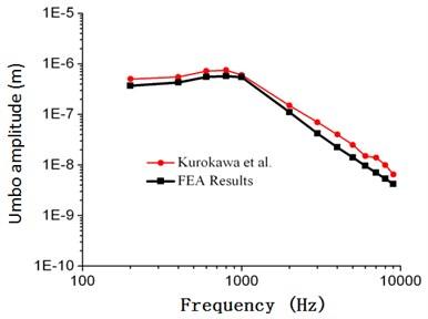 Comparison between the numerical  and experimental umbo amplitude  of Kurokawa (105 dB)