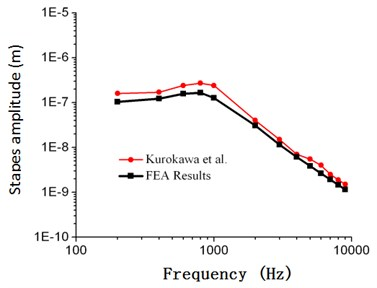 Comparison between the numerical  and experimental stapes amplitude  of Kurokawa (105 dB)
