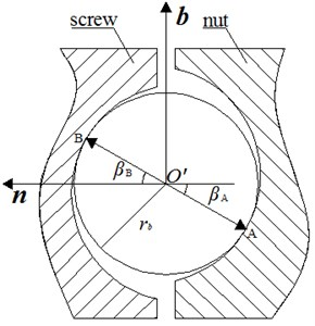 Schematic of contact point between ball and raceway
