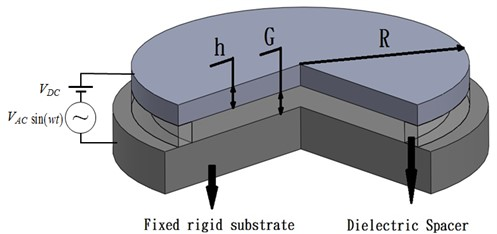 Schematic illustration of the circular micro-plate