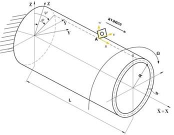 Schema of the model