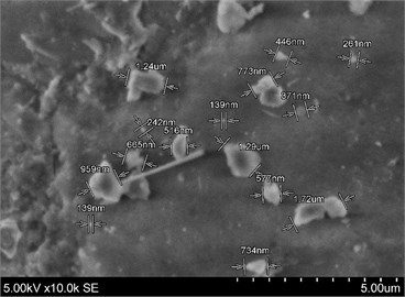 SEM image of test dust Arizona A4: a) blocks found; b) small fragments on big ones