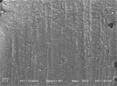 The SEM of fuel spray nozzle channel after abrasive flow machining in different abrasive size