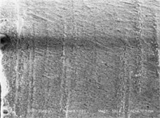 The SEM of fuel spray nozzle hole after abrasive flow machining in different density