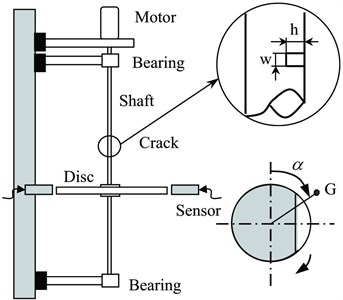 Experimental system of a vertical rotor