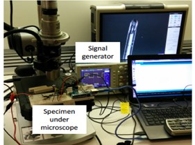 a) The experimental setup for testing the manufactured specimen;  b) the actuator wire connected to the optical fiber under the microscope