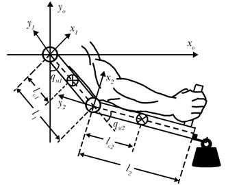 Model of a 2-DOF upper-limb exoskeleton