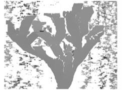 Disparity image using area-based matching and skeleton image