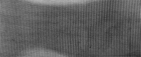 The eigenmodes of partially biodegradable LDPE2 film