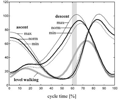 Angle variation during ascent and descent through walking pattern (The unit of angle is '°') [5]