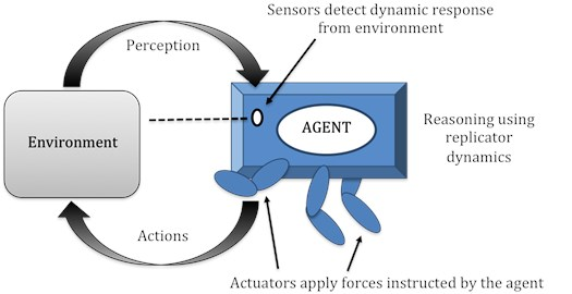 Agent representation for autonomous control of structures