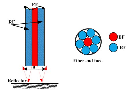 Arrangement of the fiber bundle