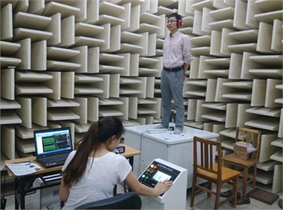 The vibration experiment