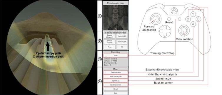 Epiduroscopy training simulator developed based on spatial cognitive learning