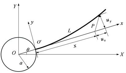 A rotating flexible beam