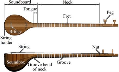 Setar's schematic view