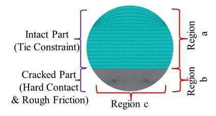 Simulation details for the crack cross-section  and mesh around the crack in a) transversal and b) longitudinal direction