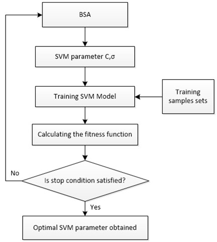 Parameter optimization flowchart of SVM based on BSA