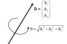 Euler vector