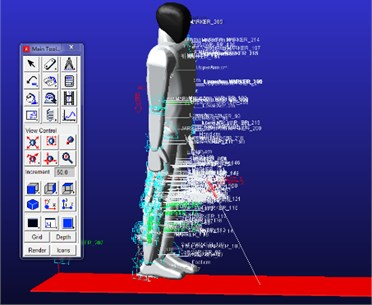 Wearable exoskeleton model and the human body