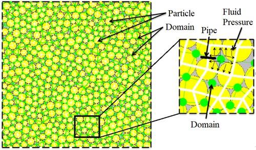 PFC model for mechanism of fluid-mechanical coupling