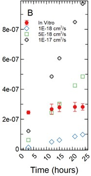 a) Simulations run under a 1 µm monolayer thickness assumption, all simulations were found to be statistically significantly different from the in vitro data with p-values < 0.05; b) simulations run  under a 5 µm monolayer thickness assumption were found to be statistically significant  (p-value < 0.05) for both the 1.00E-18 and 1.00E-17 cm2/s effective diffusion constants  with the 5.00E-18 cm2/s diffusion constant gave a p-value of 0.547