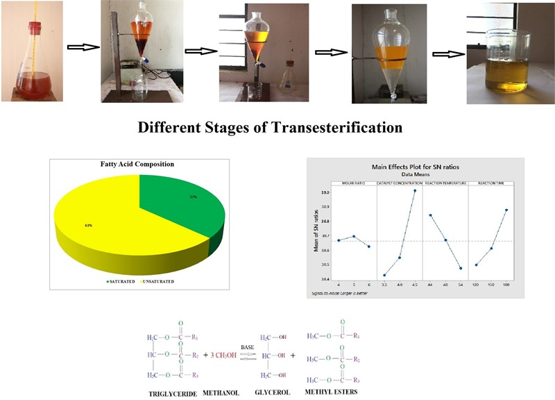Optimization of palm methyl ester and its effect on fatty acid compositions and cetane number