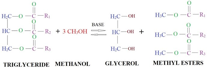 Transesterification mechanism