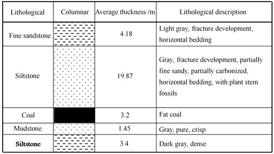 Geological column of coal seam